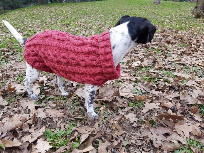 pull-tricot-torsade-chien-dog-knit-drops-bergere-de-france-fileco-vieille-morue-12
