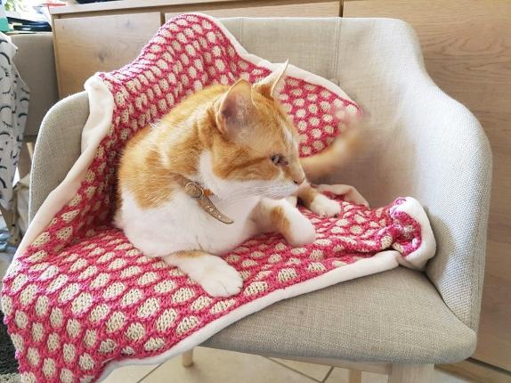 bee blanket we are knitters knit cotton malabar couverture abeille naissance chat bébé 8