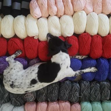 6 raisons de ne pas apprendre commencer tricot tricoter crochet crocheter vieille morue 1